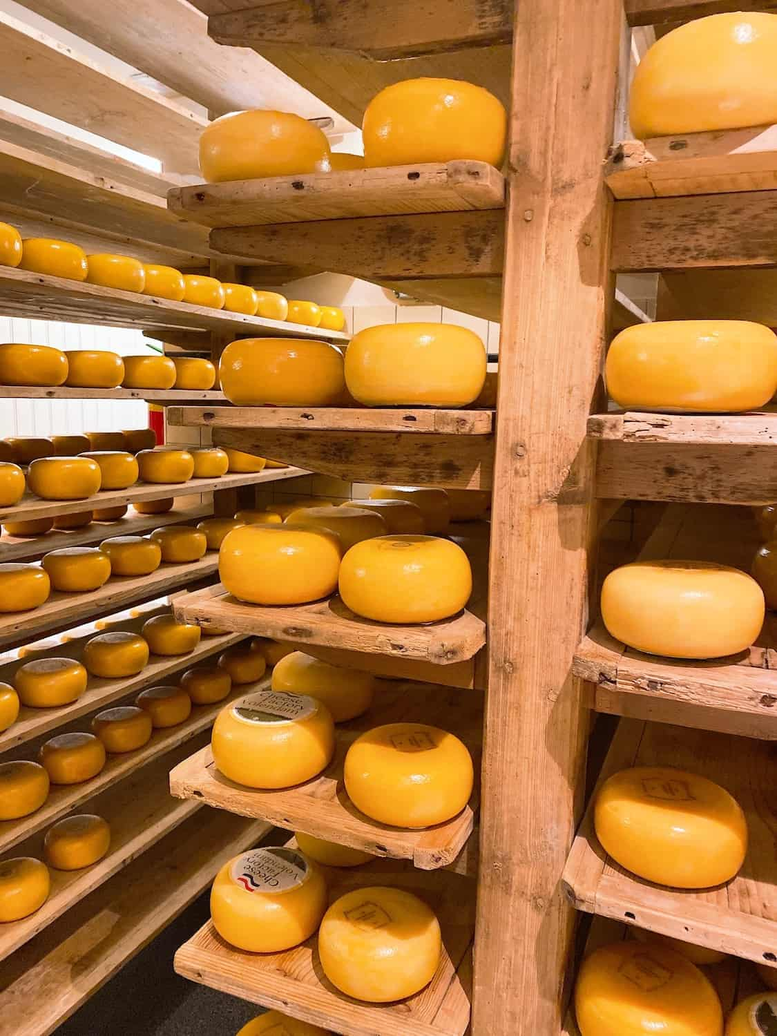 Gouda Cheese Factory in the Netherlands